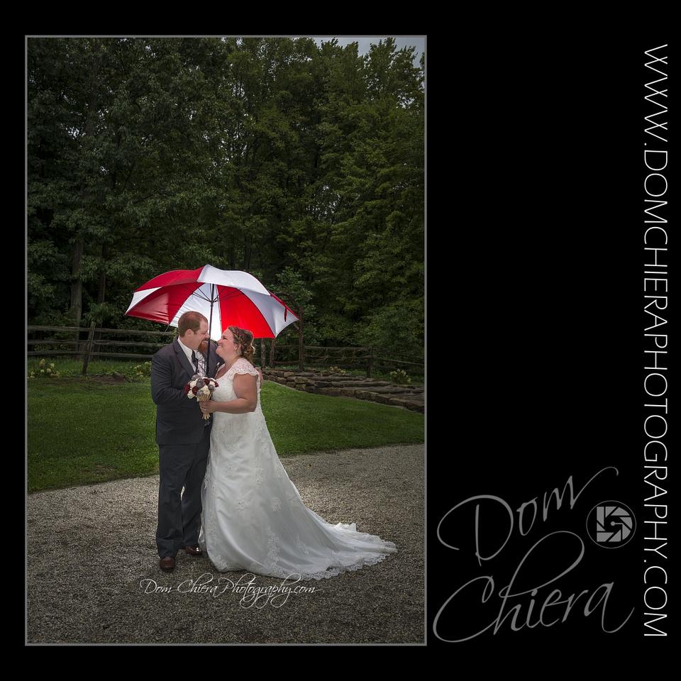 Wedding at Alford's Glen